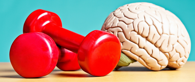 Improve Brain Fitness Tips