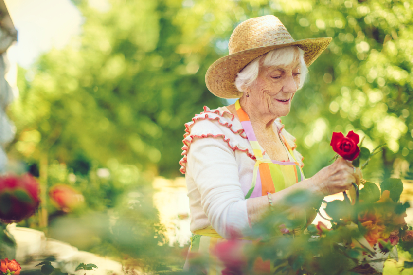 5 Ways to Avoid Joint Pain While Gardening