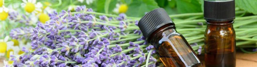 How Can Essential Oils Benefit Seniors?