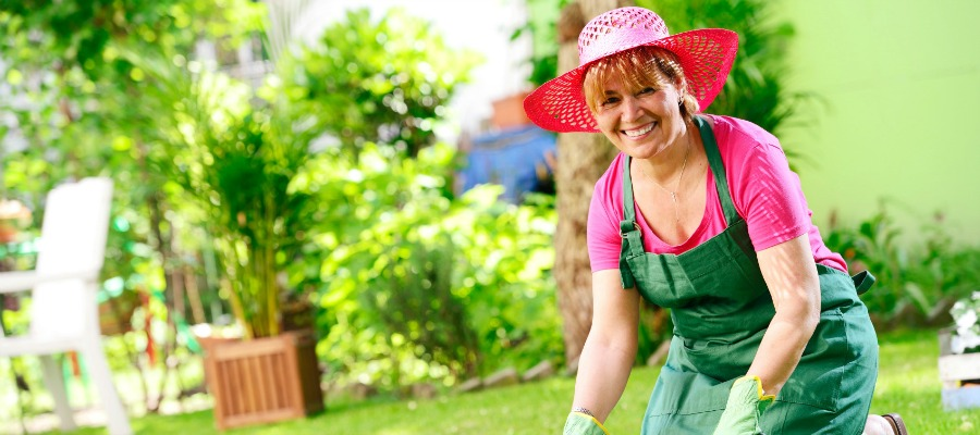 Start a Garden as a Fun Activity