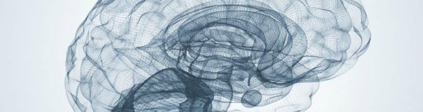 Brain Challenge Test Could Predict Alzheimer's