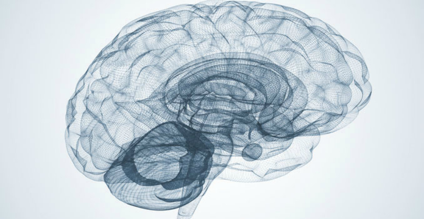 Brain Challenge Test Could Predict Alzheimer's
