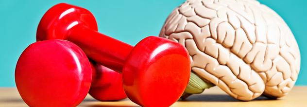 Improve Brain Fitness