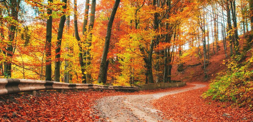 How the Changing of Seasons Affect Seniors