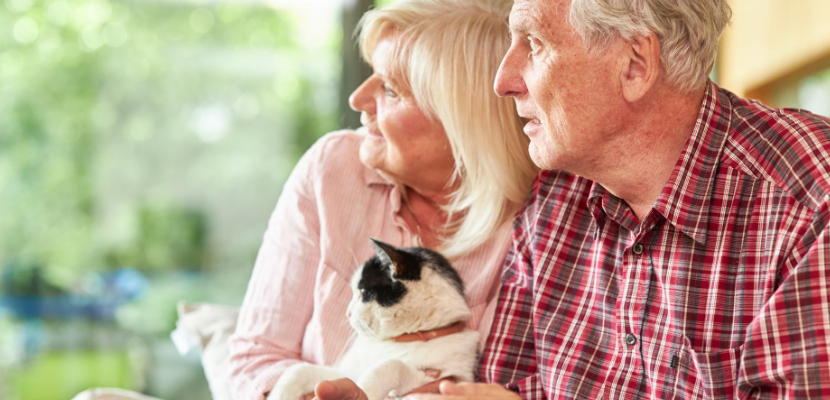 The Best Pet Companions for Seniors
